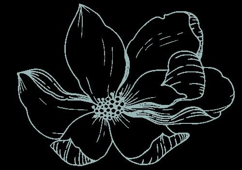 magnolia baby company (4)